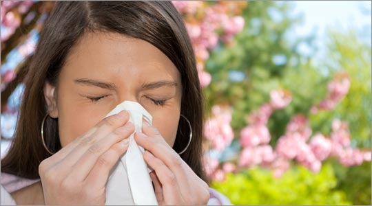 Environmental Allergy Remedies Brooklyn NY - Dr. Donna Sergi Chiropractor