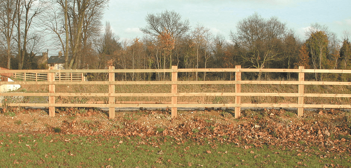 fencing experts