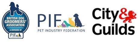 City & Guilds PIF logos