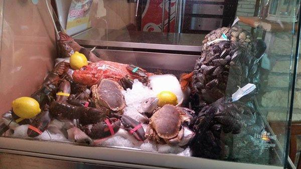 dei crostacei,cozze e altro pesce in una vetrina con del ghiaccio