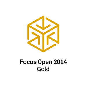 focus open 2014 gold logo