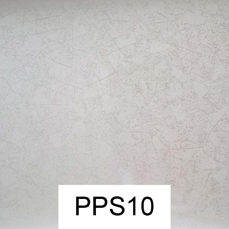 PPS10