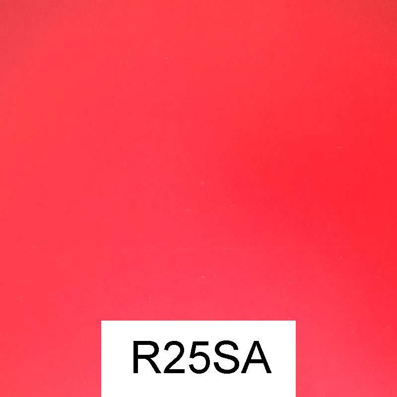 R25SA