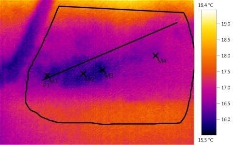 Immagini termografiche