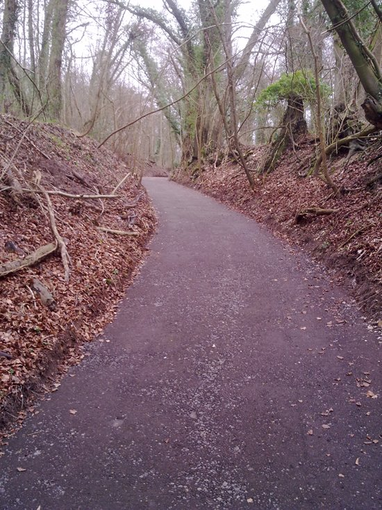 Rights of Way Footpath