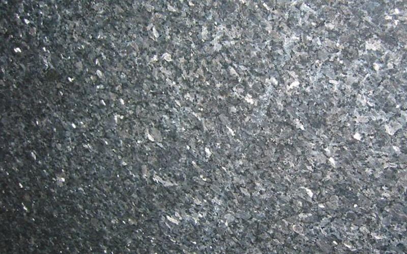 Labrador Silver
