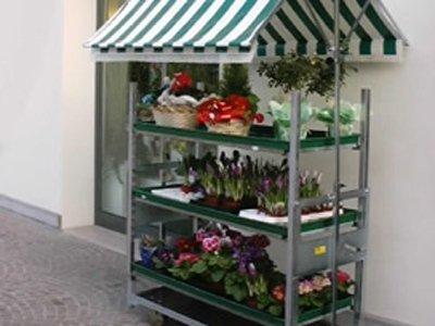 fiori per terrazzo