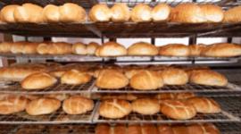 pane toscano, pane senza sale, pane tradizionale