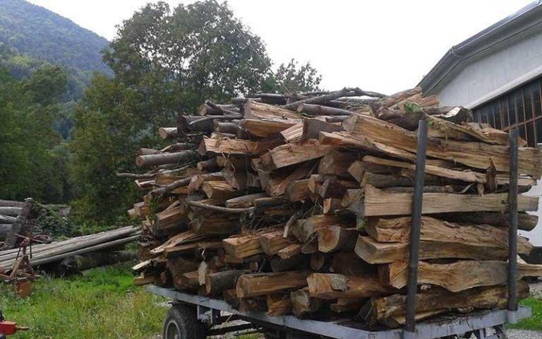 trasporto di legna da ardere