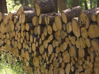 legna da riscaldamento