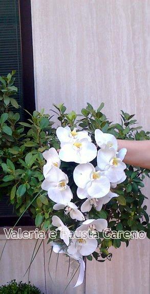 mano che tiene dei fiori bianchi