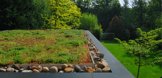 A green roof installation