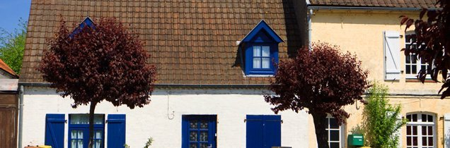 Houses with differently pitched roofs
