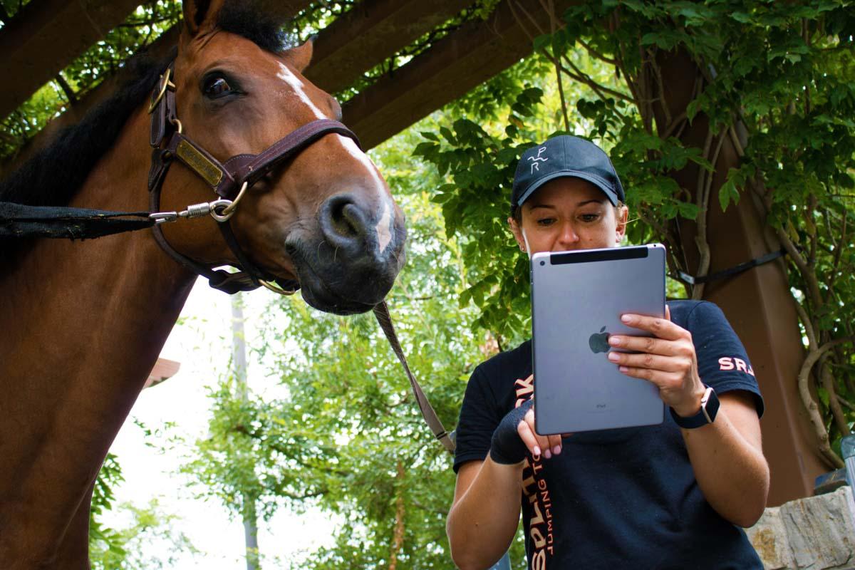 electronic vet for horse vetrinarians