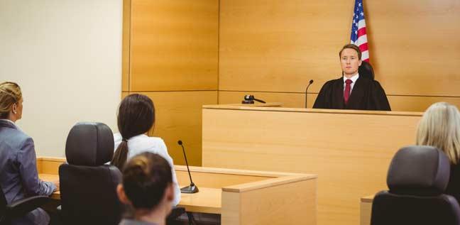 Commercial Litigation Lawyer NYC Fran Perdomo - Perdomo Law