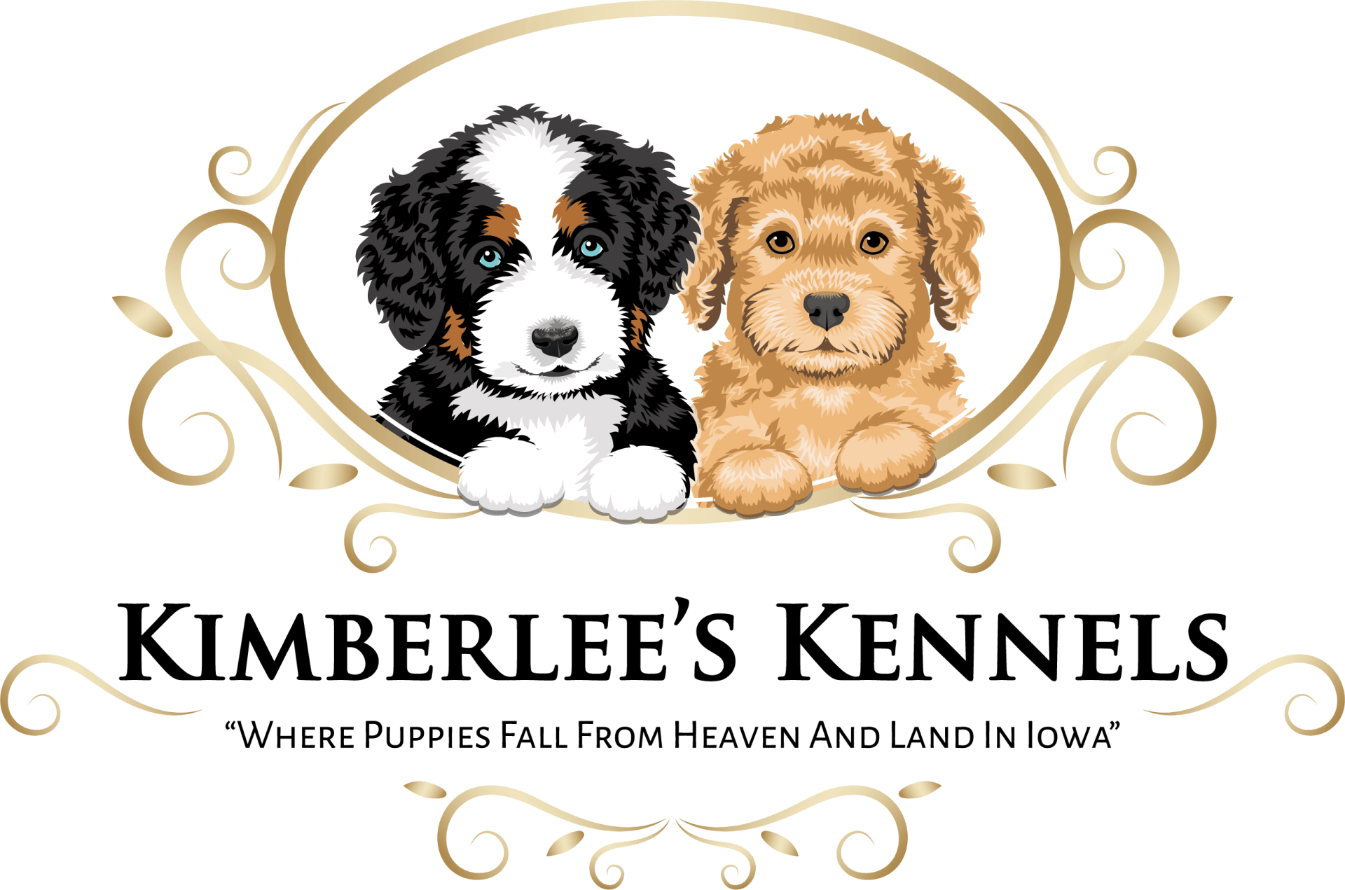 HOME | Kimberlees Kennels