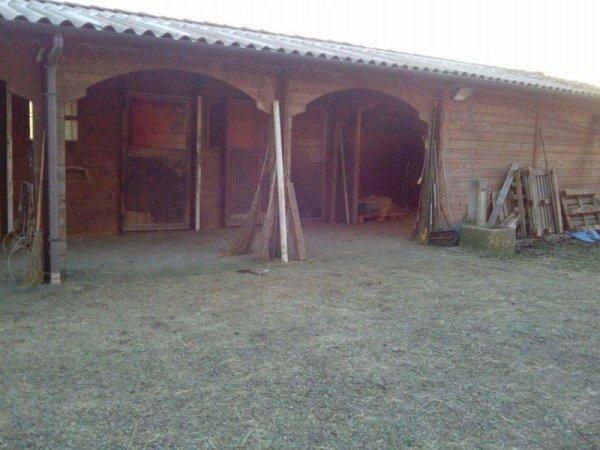ranch cavalli