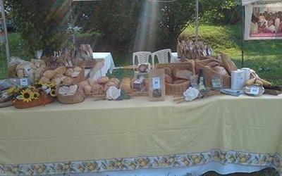 pane di diverso tipo sul tavolo