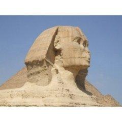 egitto, piramidi, passeggiata in cammello, escursioni