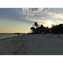 spiagge bellissime, viaggi indimenticabili, estività