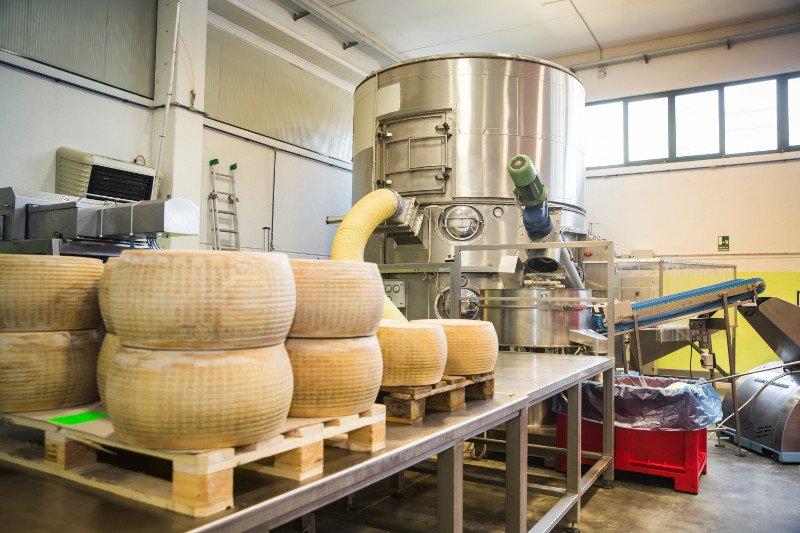 Delle forme di formaggio appoggiate su dei bancali