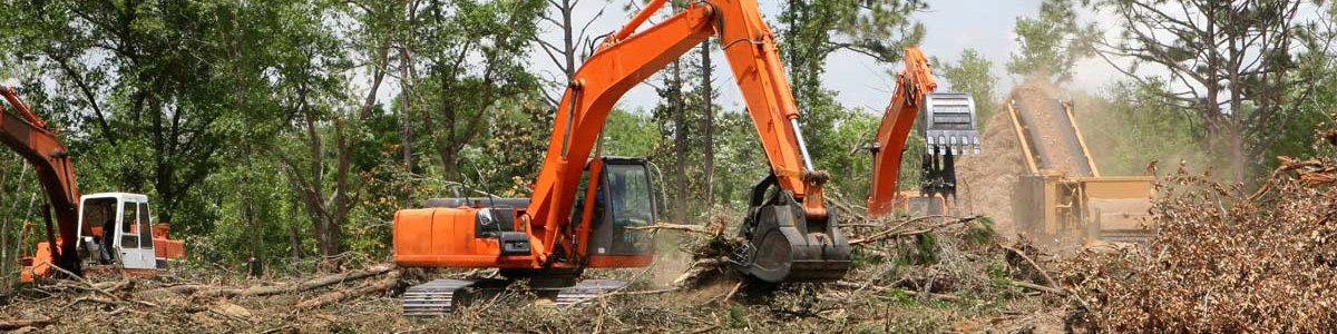 jackson tree service clearing land with machinery