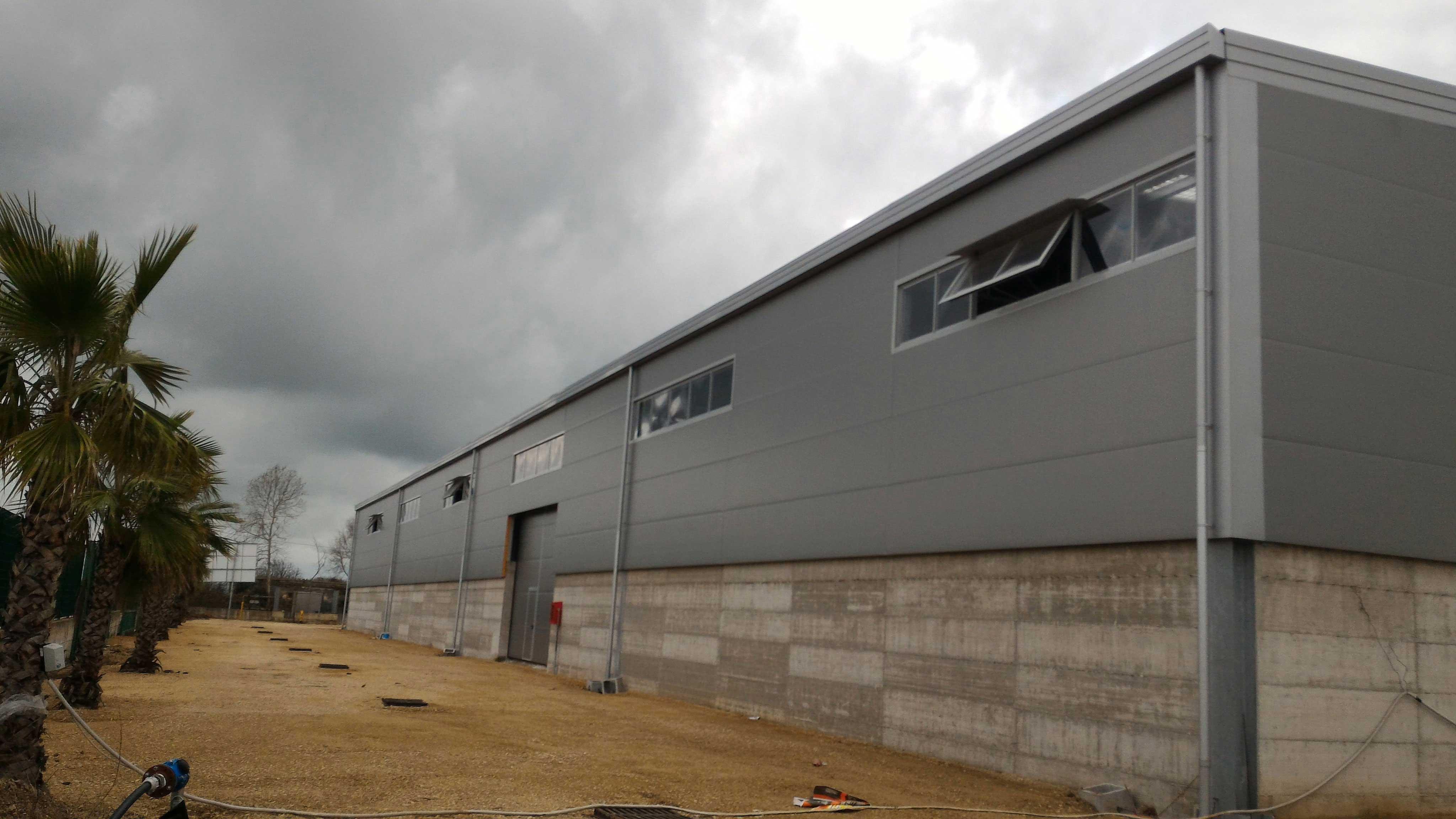 esterno di una fabbrica di color grigio e nel cortile delle palme