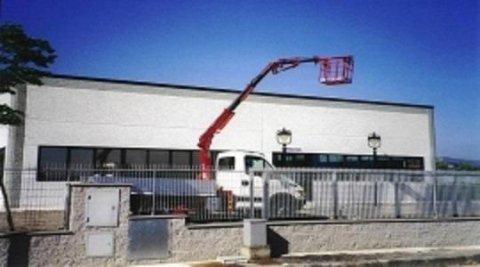 camion con carrello elevatore