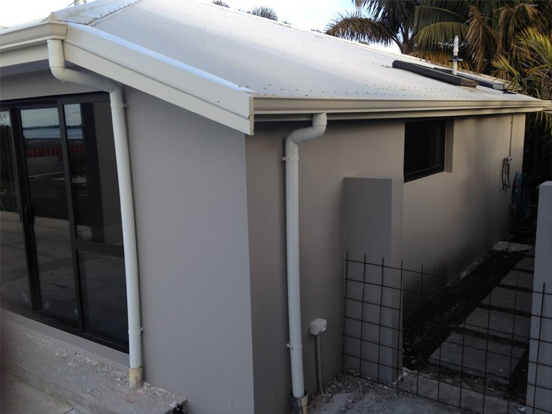 Sprouting and guttering in Bay of Plenty