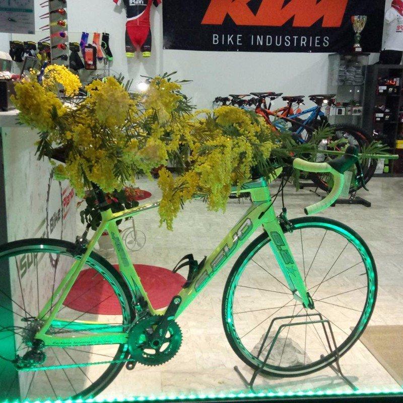 una bici verde e delle mimose
