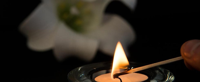 Fiore bianco e una candela