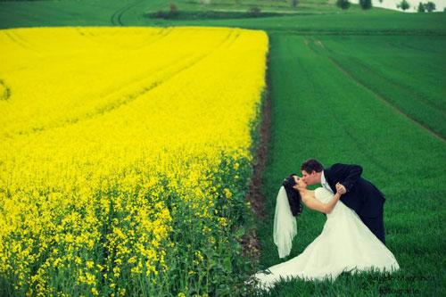 coppia che si baciano nei campi di grano