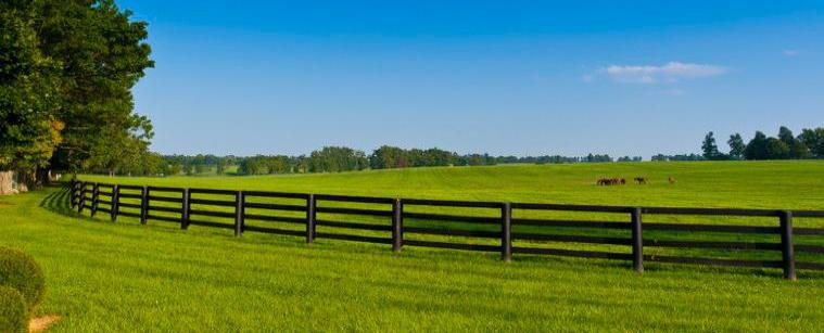 Fence Company in Raleigh NC
