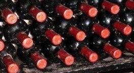 azienda_vitivincola