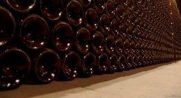 vendita_vino_rosso