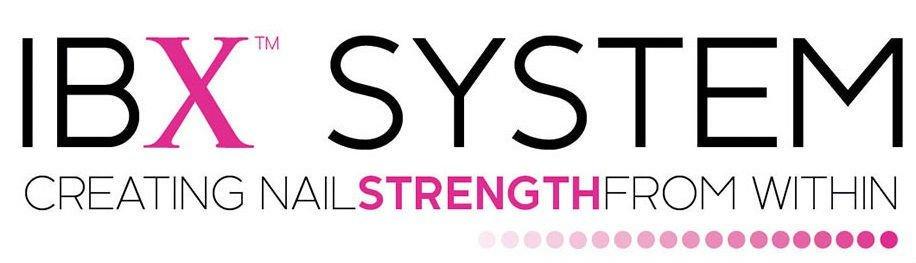 IBX SYSTEM logo