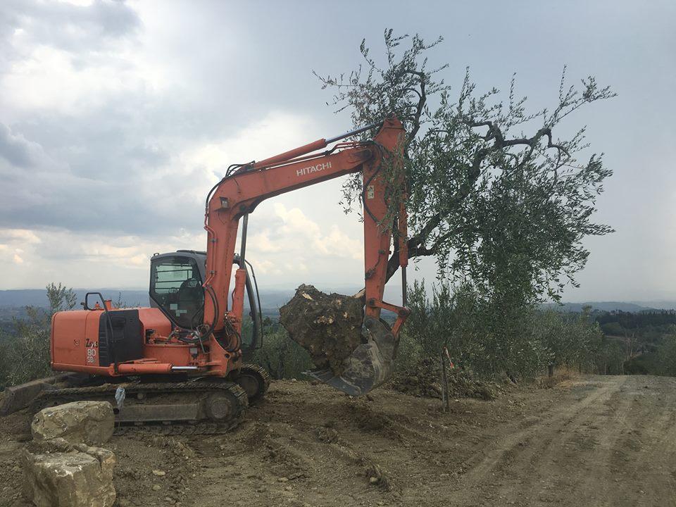 scavatore cingolato