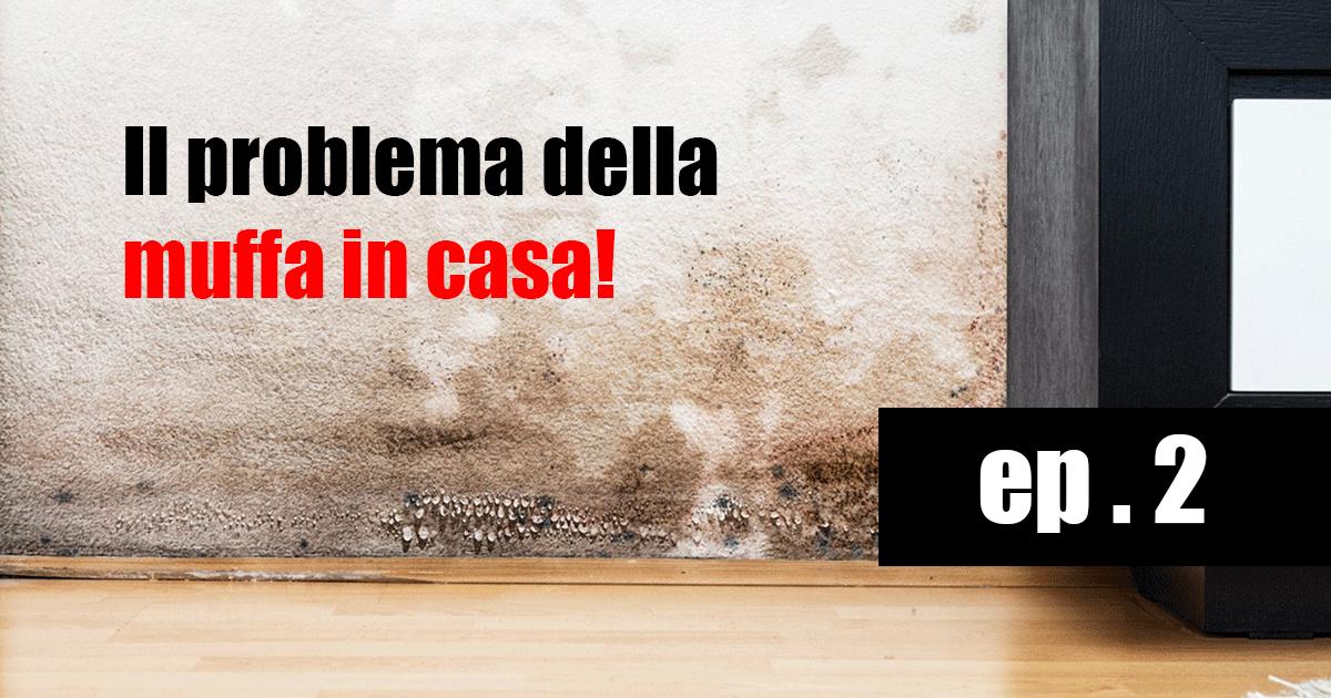 Trattamenti anti umidit bologna ravenna forli - Umidita giusta in casa ...