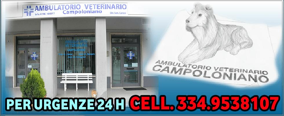 Clinica veterinaria, Rieti