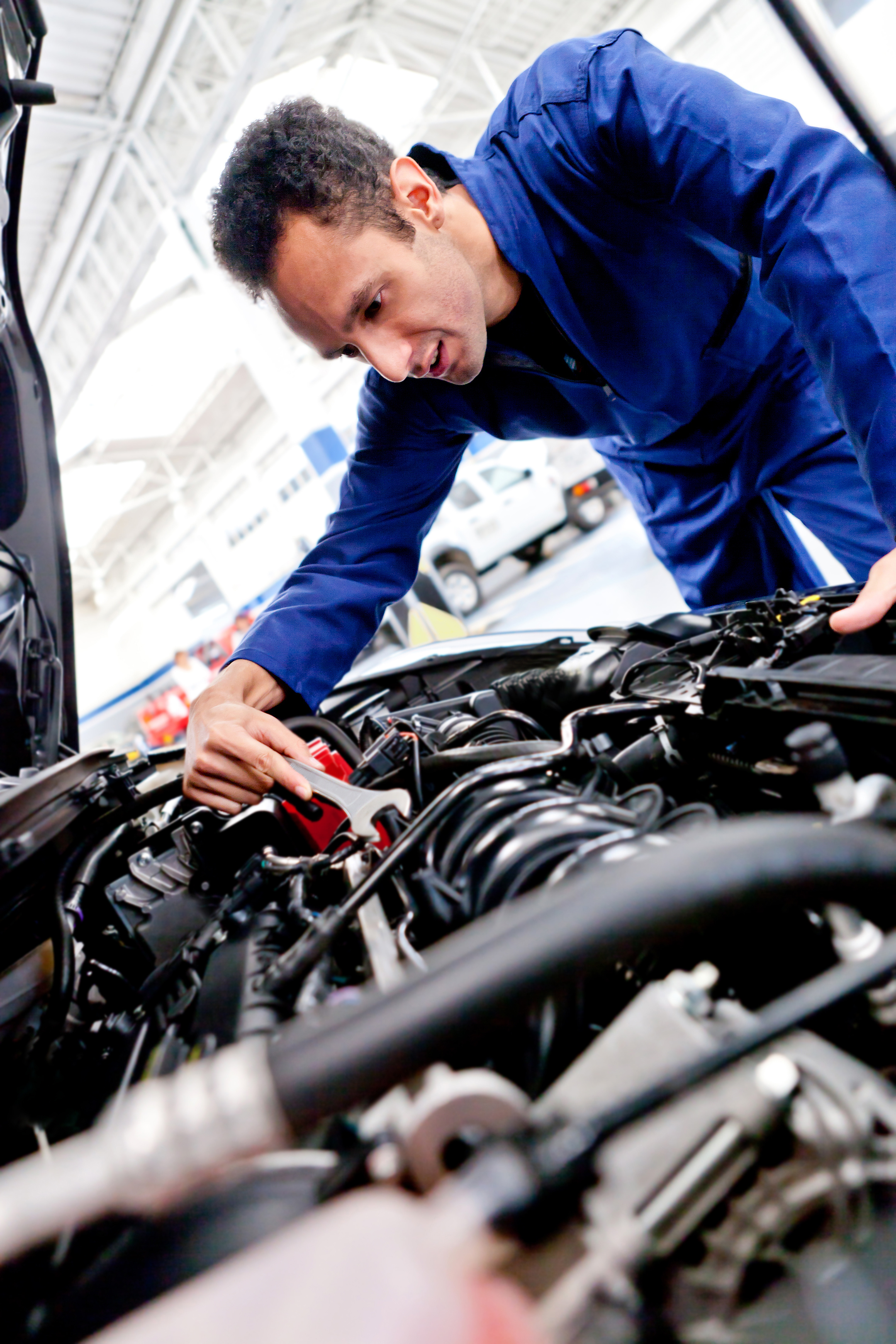Expert Auto Mechanic