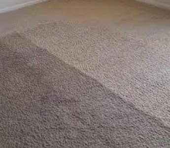 brown carpet cleaning