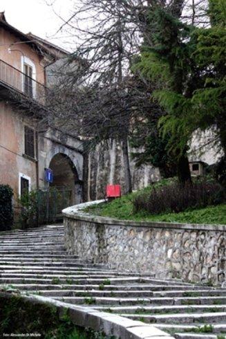 una scalinata e un aiuola con dei pini