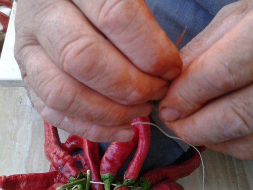 uomo lega dei peperoncini rossi