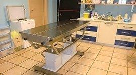 centri di chirurgia veterinaria