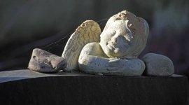 pratiche cimiteriali, auto funebre, trasporto salma
