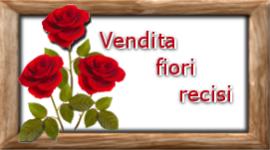 vendita_fiori_recisi