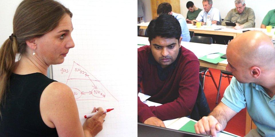 Course instructor explains explains ammonia vs ammonium. - Students check their data