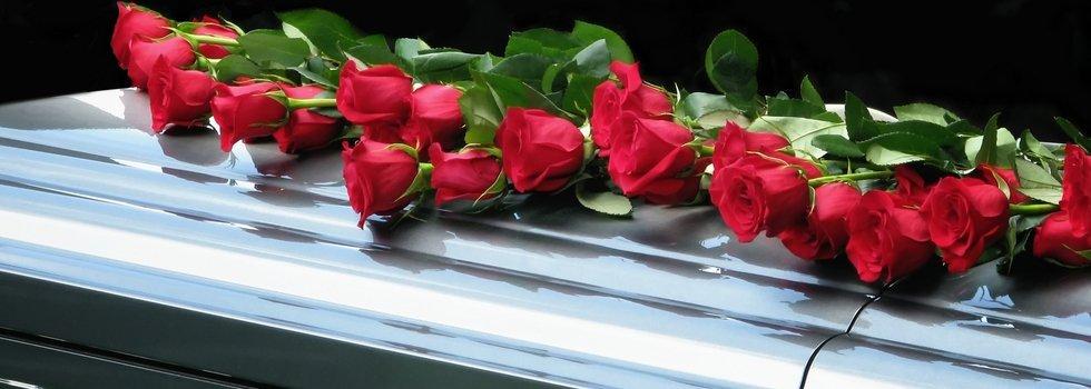 alcune rose sopra una bara argentata