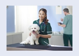 Vet posing with small white dog
