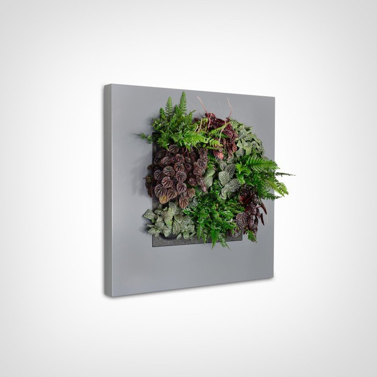 Live And Green Frames For Office Walls